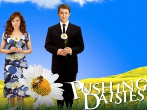 Pushing Daisies Keyart