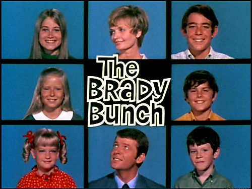 http://anatomyofapilot.files.wordpress.com/2011/07/brady-bunch.jpg