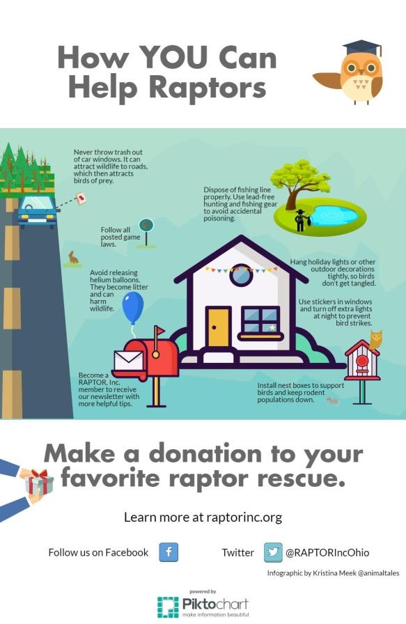 Help-raptors-infographic-final